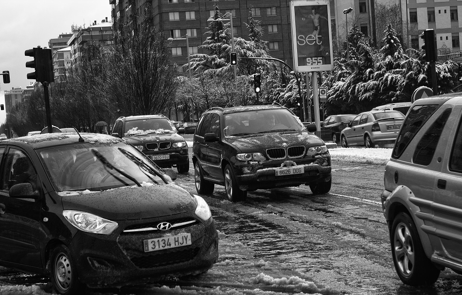 Black_and_snow_8435715089